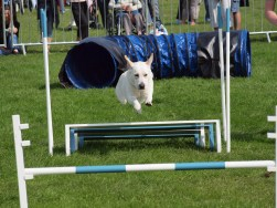 Maggie long jumping