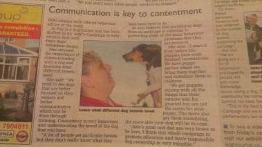Jo quoted at the Launch of the Responsible Dog Owership Campaign