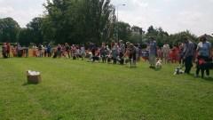 dog show 11