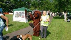 dog show 6
